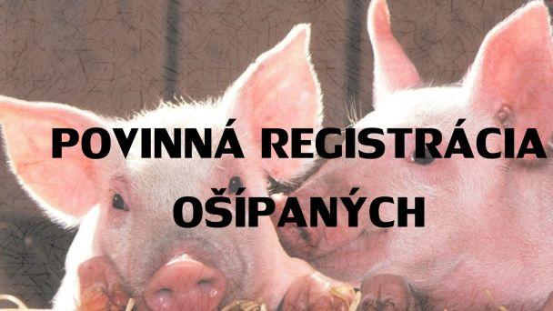 Povinná registrácia ošípaných